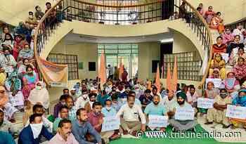 MC workers seek regular jobs, protest outside Mayor's office - The Tribune
