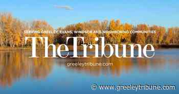 Check out antique cars and tractors this Father's Day with an annual event - Greeley Tribune
