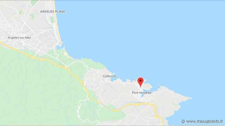 Pyrénées-Orientales : violent feu de garrigue à Port-Vendres, 50 hectares brûlés et 180 pompiers mobilisés - Franceinfo