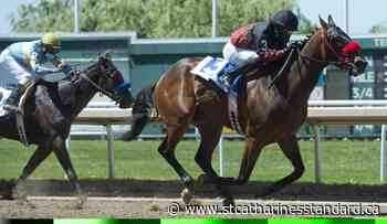 Souper Deputy gallops to first win of Fort Erie racing season - StCatharinesStandard.ca