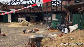 Zweites Feuer in Dachdeckerei: Feuerwehrfrau rettet 20 Hühner in Kremmen vor dem Flammentod - moz.de