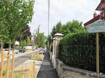 A Lagny-sur-Marne, un nouvel espace nature aménagé en bords de Marne - actu.fr