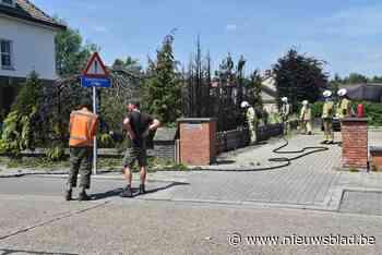 Hagen en boom in Kiewitse tuin schieten in brand bij wegbranden van onkruid - Het Nieuwsblad