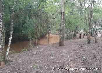 Dono de sítio em Bonito é multado em R$ 5 mil por desmatar e construir curral as margens de córrego - O Pantaneiro