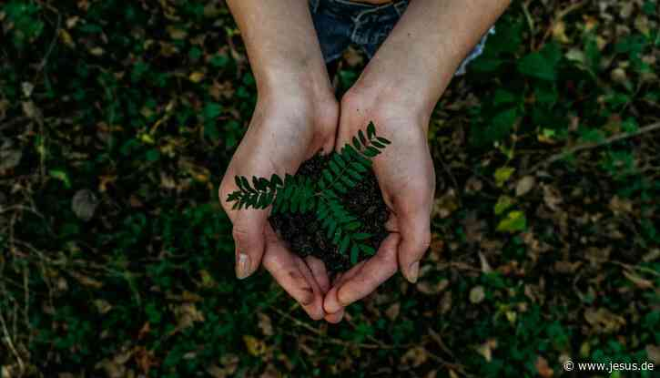 Auftrag Umwelt: Unsere Aufgaben auf der Erde