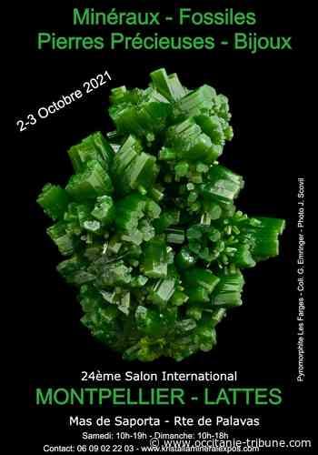 Lattes - 24 ème Salon international minéraux fossiles gemmes Lattes - OCCITANIE tribune
