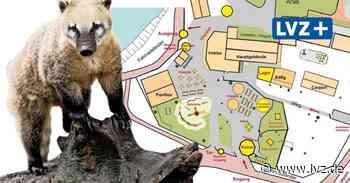 Nasenbären und neuer Eingangsbereich – Tierpark Eilenburg wird noch schöner - Leipziger Volkszeitung
