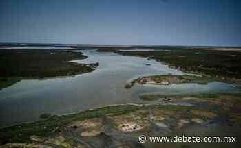 Sequía afecta el santuario de cocodrilos en Eldorado, Culiacán - Debate