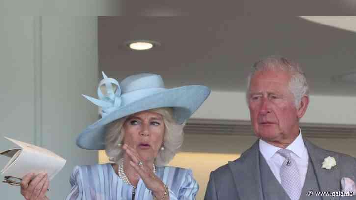 Herzogin Camilla + Prinz Charles: Die Royals sind wieder auf der Pferderennbahn - Gala.de
