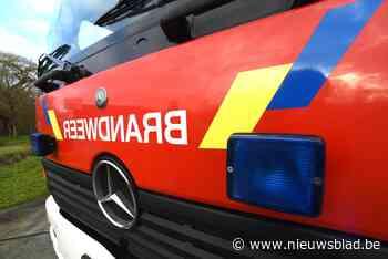 Brandweer blust haagbrand in Herk-de-Stad (Herk-de-Stad) - Het Nieuwsblad