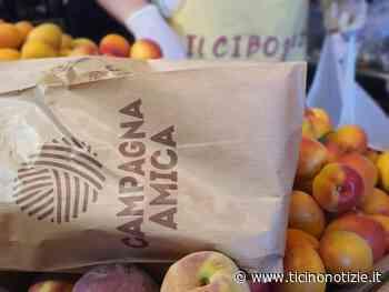 Anche a Trecate è tempo di ......Agrimercato - Ticino Notizie