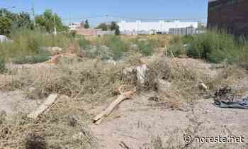 Más casos de terrenos intestados en el ejido San Miguel Mecatepec - NORESTE