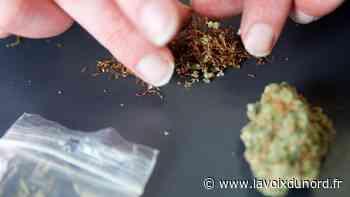 Onnaing: interceptés avec 21 kilos de cannabis sur l'autoroute - La Voix du Nord