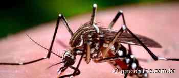 Marialva registra 1º óbito por dengue no atual período epidemiológico - GMC Online