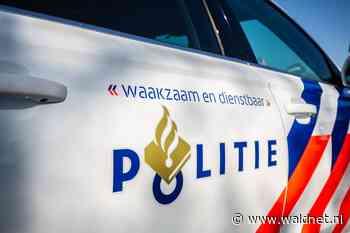 Buurtonderzoek naar horen van schoten in De Wiken - WâldNet