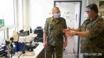 Bundeswehr forscht an Biosensoren – Soldaten mit mehr Leistung - Nordkurier