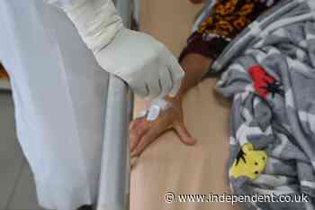 Hundreds of Indonesian doctors contract Covid-19 despite Sinovac vaccination