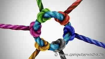 Diversität in der Beratung: Unterschiede bringen neue Impulse