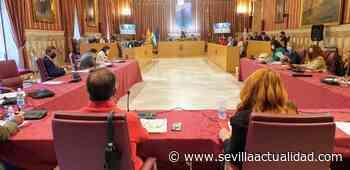 Homenaje a los bebés robados en la glorieta del Distrito Bellavista - Sevilla Actualidad