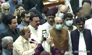 Fistfights, profanities mar National Assembly session - DAWN.com