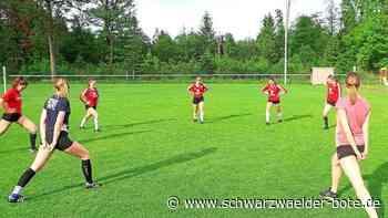 Faustball-Bundesliga der Frauen - TSV Calw und TSV Dennach sind in der Favoritenrolle - Schwarzwälder Bote