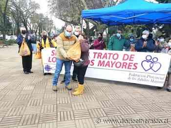 En Linares fue resaltado el Día del Buen Trato al Adulto Mayor - Diario El Heraldo Linares