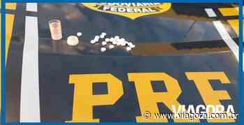 PRF autua caminhoneiro por portar anfetaminas na cidade de Picos - Viagora