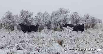 Histórica nevada: San Luis y La Rioja también se vistieron de blanco - La Voz del Interior