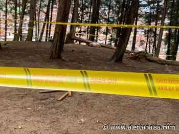 Hallan cadáver de una mujer en zona boscosa del barrio Caicedo de Medellín - Alerta Paisa
