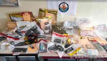 Mauguio : un trafic de stupéfiants démantelé, quatre personnes seront jugées - Midi Libre