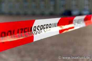 Kreis Neu-Ulm: Frau findet beim Spazierengehen Panzergranate - BSAktuell