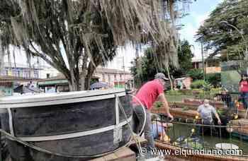Peces del estanque de la plaza principal de Circasia retornarán en 10 días - El Quindiano S.A.S.