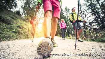 Neustart beim SV Althengstett: Gemeinsamer Sport im Freien