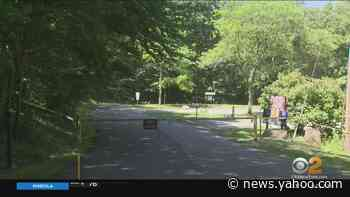Park In Morris County Closed Because Of Aggressive Bear - Yahoo News