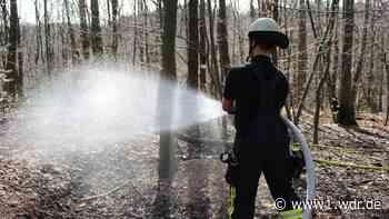 Streit um Löschteiche in Windeck: Naturschutz contra Brandschutz - WDR Nachrichten