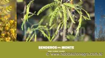 Viedma avanza en la conservación de la biodiversidad - Noticias Río Negro