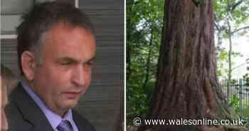 Housing boss appealing tree feeeling insists 'it was just a mistake'