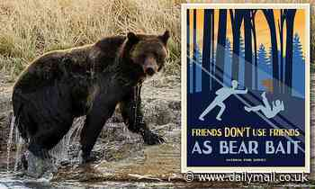 National Park Service offers hilarious bear safety tips to tourists