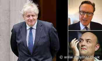 Dominic Cummings says people underestimate Boris Johnson and PM is 'complex' person