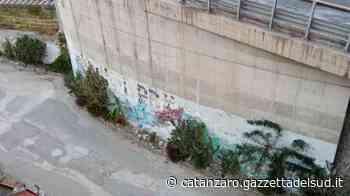 """Catanzaro, il quadrivio è un pericolo. Il consigliere Ursino: """"Non può intervenire il Comu - Gazzetta del Sud - Edizione Catanzaro, Crotone, Vibo"""