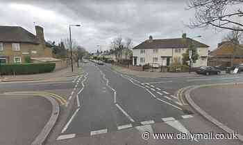 Police launch manhunt after attempted abduction of schoolgirl