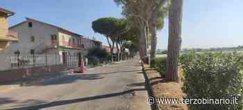 Messa in sicurezza su Viale dei Pini a Pescia Romana - Terzo Binario News - TerzoBinario.it