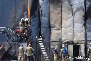 Schade aan bedrijfshal in Rotem beperkt tot wand na uitslaande brand - Het Belang van Limburg