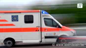 Vier- und Marschlande: Lkw rammt Linienbus in Kirchwerder: Fünf Verletzte