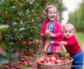 Multiple edible parks found throughout Sylvan Lake - Sylvan Lake News