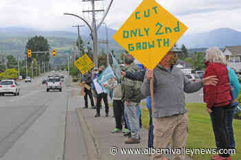 B.C. must cease old-growth logging, say Port Alberni protesters - Alberni Valley News