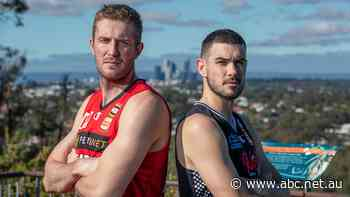 NBL grand final a promoter's dream as Melbourne United clash with Perth Wildcats
