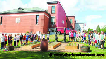 News Lennoxville Elementary students getting into gardening - Sherbrooke Record
