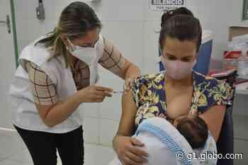Varginha e Pouso Alegre começam a vacinar grávidas e puérperas sem comorbidades contra a Covid-19 - G1