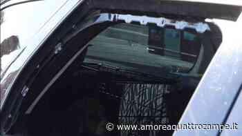 Coniugi lasciano i cani chiusi in macchina e rubano in un bar (VIDEO) - www.amoreaquattrozampe.it